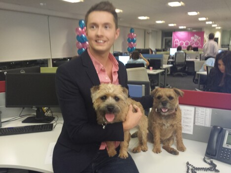 Sean Batty in the office with border terriers Rosie & Jock
