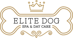Harris Tweed products now available in Elite Dog Spa & Day Care