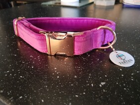 Fuschia velvet collar