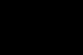 Polycotton Bandana - Poppies on navy