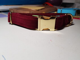 Berry Red Velvet Collar